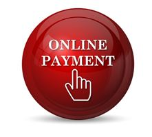 logo online payment